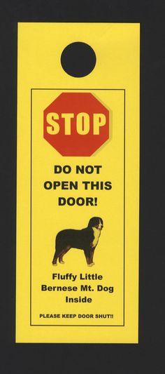 Fluffy Little Bernese Mountain Dog Inside  Do Not Open by KnobNots, $5.00