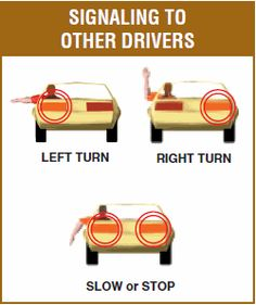 Interesting, the turn signal situation in Europe started differently. www.hoffmanchryslerjeepdodge.com explains that the solution for signaling turns or lane changes was originally solved with hands signals but later via semaphore indicators.