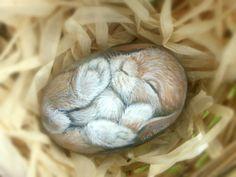 Roche peinte, un lapin de Pâques de bébé OOAK conçu par Shelli Bowler. Il mesure 4,5 pouces de longueur et de 3 pouces à travers. Ce lapin doux mettra un sourire sur votre visage.   * toutes les conceptions sont copie droit protégé et possédé par lartiste.