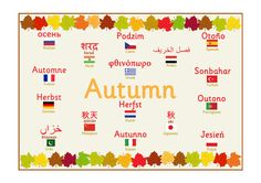 Multilingual Autumn Poster...Multilingual poster featuring the word 'Autumn' in 17 different languages with decorative autumnal leaves running along the top and bottom. #Autumn