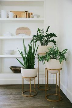 Very cool plant stands!