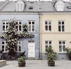 Copenhagen - Frederikke Waerens