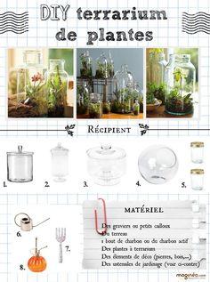 DIY terrarium | blog Maginéa