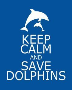 TAIJI. JAPAN, CRUEL 'FISHERMAN' SLAUGHTERING DOLPHINS IN THEIR HUNDREDS. NOT A TRADITION.. STARTED IN 1969. DISGUSTING AND EVIL.