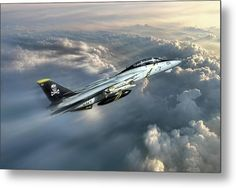 Jolly Rogers F-14 Tomcat Metal Print by Peter Chilelli