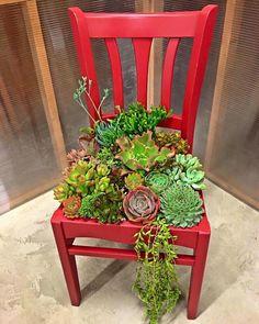 July DIY Star Shaped Planter w/ Succulents Succulent chair planterSucculent chair planter Succulent Planter Diy, Succulent Gardening, Diy Planters, Garden Planters, Container Gardening, Organic Gardening, Tall Planters, Planter Ideas, Concrete Planters