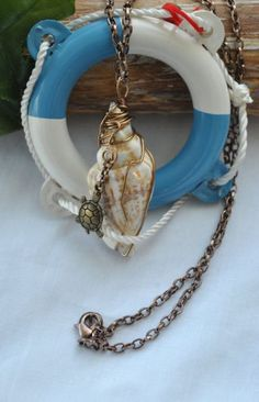 Wire wrapped shell shell necklace