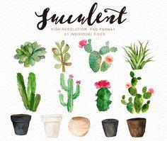Watercolor succulent clip art collection on Behance