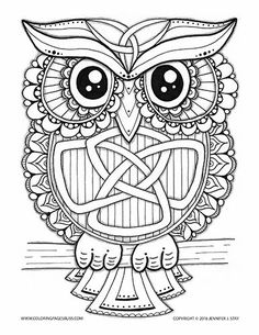 coloring page for adults owl coloring page this charming celtic owl has a trinity - Coloring Page Owl