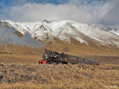 Trochita. Esquel. Patagonia. Argentina