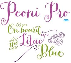 Pretty and playful font... perhaps for the wedding industry?