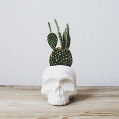 Very random piece of decor to add to your garden for some funk if that's your style.  I love the cacti.