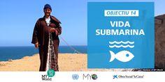 Vida submarina: objectiu nº 14 de desenvolupament sostenible (ODS).