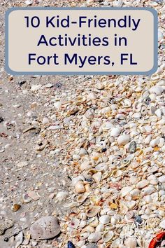 10 things to do in Fort Myers with kids including shell collecting and spring training. Ft Meyers Florida, Fort Myers Beach Florida, Florida Vacation, Florida Travel, Florida Beaches, Beach Travel, Fort Myers Beach Hotels, Florida Camping, Florida Activities