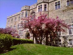 UWO Campus