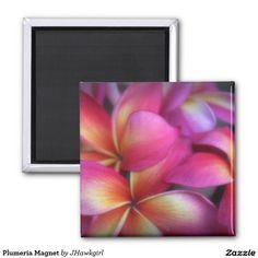 Plumeria Magnet