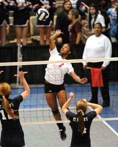 LHSAA Volleyball Championships Volleyball, Sumo, Wrestling, Events, Sports, Lucha Libre, Hs Sports, Sport