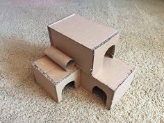 Hamster Diy Cage, Diy Hamster Toys, Hamster Life, Hamster Habitat, Rat Toys, Syrian Hamster, Pet Mice, Pet Rats, Teacup Pigs