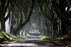 Has there ever been a better time to be a Game of Thrones fan in Northern Ireland?