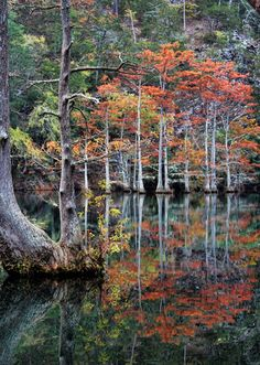 B is for Beavers Bend! Any time of year is the right time for a trip to Beavers Bend & Hochatown State Park in Broken Bow. Known as one of the Sooner State's most beautiful areas, the park is home to Broken Bow Lake and a myriad of comfy cabins. Hiking, swimming, canoeing, fishing and horseback riding are just a few activities available at one of Oklahoma's most popular vacation destinations.