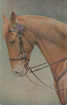 Sorrel In Violets - Vintage 1920s Bridled Horse Art Postcard. $7.50, via Etsy.