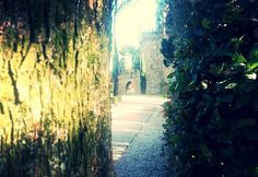 #Castle at morning  #travel #Umbria