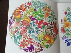 Enchanted Forest By Johanna Basford I Mainly Used Prismacolor Pencils Coloured ThirtyNineSteps