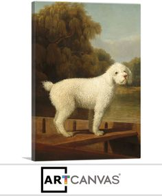 Posters & Prints Dog White Poodle In A Punt Painting By George Stubbs Repro & Garden Canvas Art Prints, Painting Prints, Framed Prints, Hudson River School Paintings, Nautical Prints, Equestrian Statue, Country Paintings, National Gallery Of Art, Country Art