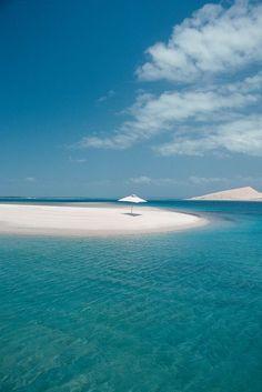 Pansy Island