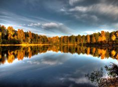 tree, reflection, tranquil scene, tranquility, lake, sky, scenics, water, beauty in nature, autumn, change, nature, cloud - sky, season, idyllic, cloud, symmetry, standing water, calm, outdoors, non-urban scene, growth, majestic, no people, day, orange color, cloudy, non urban scene, landscape, blue
