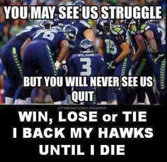 10 Hilarious Cam Newton Memes No Matter If You Bleed ... |Panthers Lose Meme