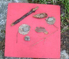 Open ideat: Metsämatikkaa (alkuopetus). Preschool, Math, Tieto, Nature, Classroom, Education, Class Room, Naturaleza, Kid Garden