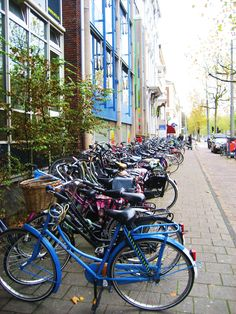 Bikes all the the way | Netherlands | Guided Tours | www.sightseeingholland.com