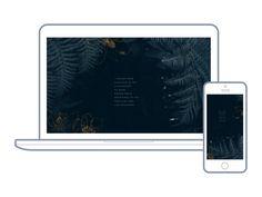 33 | Wilder for Hello Lovely Living | Free Wallpapers For Your Desktop + Phone | Ferns