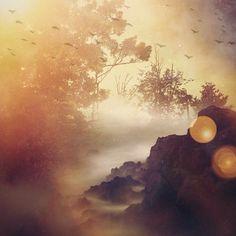 Dreamscape by Chrysti Hydeck