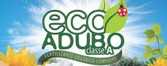Manaus Am, Ornamental Plants, Lawn, Vegetable Garden, Garden, Home, Violets