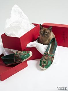 """Carmelo (""""Mello"""") Anthony understands the claw-able allure of a crocheted espadrille. Sorry kitty! Paws off. You don't get to destroy these hippie chic wonders."""