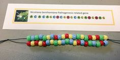 How to make a DNA Bracelet