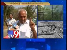 Chittoor encounter was staged - Ex Tirupati MP Chinta Mohan