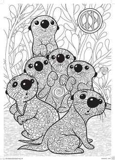 An Otter from ANIMALS An Adult Coloring Book Adult Colouring