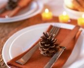 Thanksgiving on a budget ideas