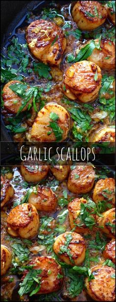 Knoblauch Jakobsmuscheln Rezept in 10 Minuten - So gesund und so Lecker *** Garlic Scallops Recipe - Healthy and Yummy in just 10 Minutes dinner appetizers Healthy Garlic Scallops Recipe Fish Dishes, Main Dishes, Garlic Scallops Recipe, Best Grilled Scallops Recipe, Garlic Shrimp, Salmon And Scallops Recipe, Garlic Salmon, I Love Food, Dinner Ideas
