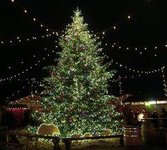 "Gefällt 489 Mal, 16 Kommentare - Darya von Bergen - Swiss Blog (@swissglam) auf Instagram: ""Merry Christmas, everybody! ✨🎄✨С наступающими, друзья! Отличного настроения и больше улыбок!…"""