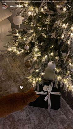Christmas Feeling, Cozy Christmas, Xmas, Simple Christmas, Christmas Cards, Mery Crismas, Christmas Wonderland, Winter Wonderland, Christmas Decorations