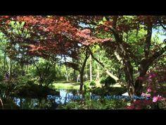 Landgoed Clingendael - Japanse Tuin - YouTube
