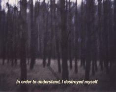 in order to understand, i destroy myself