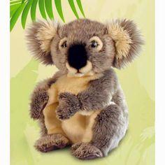 Peluche Koala | Peluches Originales