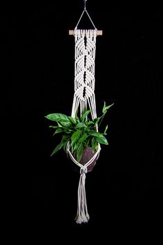 wall Plants Pot - Macrame plant hanger Wall plant hanger Hanging planter Plant pot holder Wall plant holder Bohemian decor Boho home decor Indoor wall planter. Macrame Hanging Planter, Hanging Flower Pots, Macrame Plant Holder, Macrame Plant Hangers, Hanging Planters, Plant Holders, Wall Plant Hanger, Plant Wall, Plant Decor