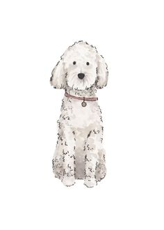 White Goldendoodle Print in 2019 . Cartoon Dog, Cartoon Drawings, Easy Drawings, Dog Illustration, Watercolor Illustration, Animal Sketches, Animal Drawings, Poodle Drawing, Drawing Tips