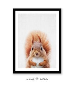 Browse unique items from LILAxLOLA on Etsy, a global marketplace of handmade, vintage and creative goods. Printing Services, Online Printing, Nursery Pictures, Baby Illustration, Trending Art, Baby Cows, Woodland Nursery Decor, Baby Prints, Farm Animals